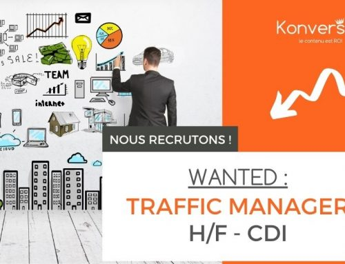 CDI Traffic Manager / Business Developer H/F
